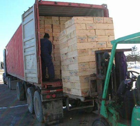 Komoditi Ekspor Utama dan Unggulan Indonesia